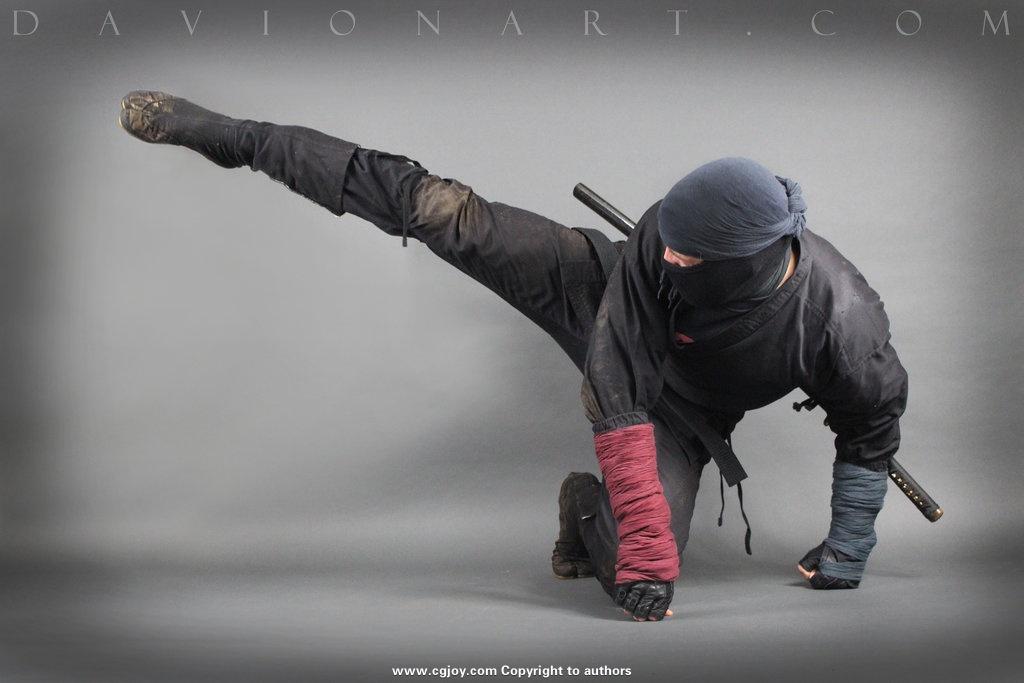 ninja_stock_ix_by_phelandavion-db6w4kn.jpg
