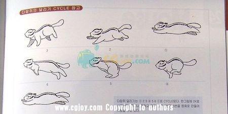 松鼠2.jpg