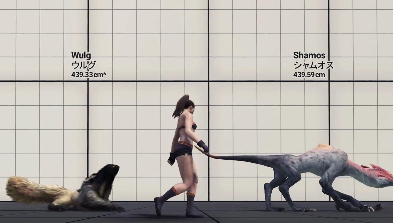 飞空 二足 四足 写实  其他  其他 待机 怪物猎人 身高尺寸对比.jpg