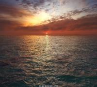 Max+PhoenixFD(凤凰流体) 制作写实夕阳下的大海