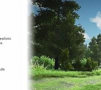Unity3d 现实森林模型下载