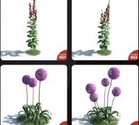 54種高精度花草植物3D模型