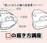 """紧随""""眼睛""""之后的脸部超重要部位!教你嘴巴的画法"""