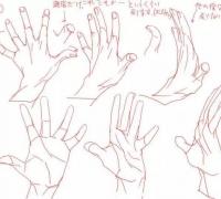 【精选】漫画人物的手怎么画?教你如何绘画人物手的基本画法!