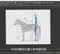 四足动物Biped骨骼架设--马