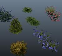 一套很实用的植物,花草,灌木