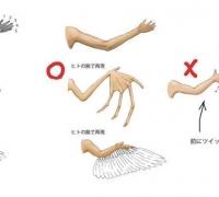 有趣的动物结构剖析!笑死我了!