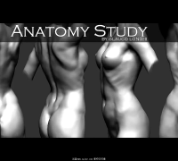 Anatomy study zbrush
