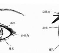 【精品】眼睛怎么畫?超簡單的二次元人物眼睛的畫法!