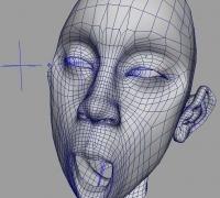 个人全职接包,高低模蒙皮与面部绑定,价格低,质量好,修改反馈及时-544454418