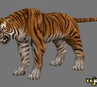剑3的老虎一只,带全套动作~~~~~~~~~~~~~