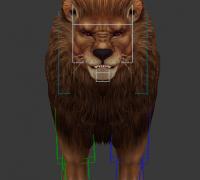 高质量逼真写实狮子模型 加贴图 加高质量动画
