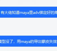 关于maya adv绑定的导出