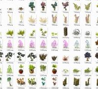 Q版植物1193P