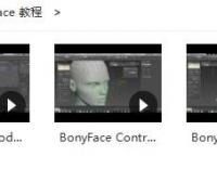 BonyFace 3.2.10 youtube720P教程