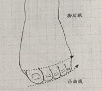 【推荐】脚部结构绘画学习方法