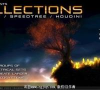 利用Speedtree和3D-Coat在Houdini中制作悬崖树木作品