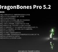 龙骨5.2 发布了