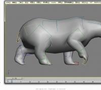 北极熊一套动作