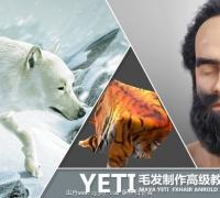 yeti for maya 毛发 中文 高级制作 教程