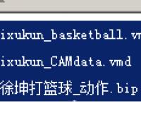 蔡徐坤舞蹈MMD,VMD,BIP数据