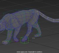 四足动物猫科类 基本动作库CS 骨骼