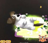 公司承接U3D AR VR 游戏等项目,专业制作儿童早教产品