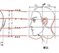 【精品】漫画人物的脸怎么画?教你如何绘画人物脸型的画法!
