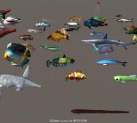 Unity资源系列之 水下动物模型包(淡水鱼、海底鱼超100种)全部都带动画!!
