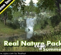 unity3d 真实自然场景模型包1—夏 Real Nature Pack 1 Summer
