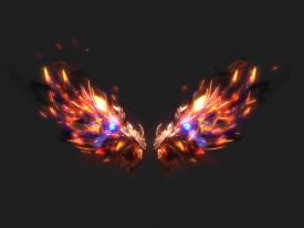 烧焦的翅膀